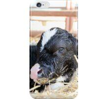 Newborn Calf iPhone Case/Skin