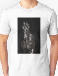 Friesian I T-Shirt