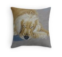 Sleeping Pet Throw Pillow