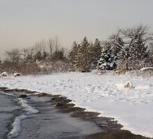 The Snow Just Stopped - a Winter Beach on Lake Ontario by Georgia Mizuleva