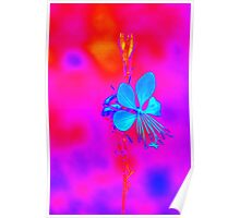 abstract flower in the garden Poster