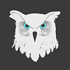Owl Light by Compassion Collective