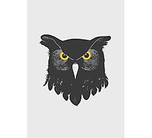 Owl Dark Photographic Print