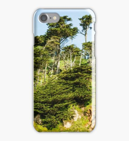 San Francisco Colorful Spring - 3 iPhone Case/Skin