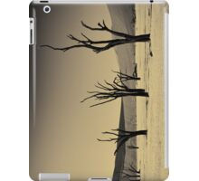 Dead Vlei with dead trees in desert landscape of Namib BW 02 iPad Case/Skin