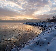 Ice Dawn by Georgia Mizuleva