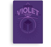 Violet Gym Canvas Print