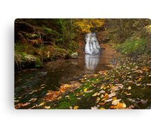 Autumn waterfall in the forest 1 Canvas Print