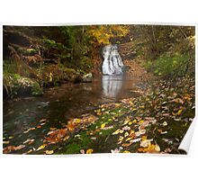 Autumn waterfall in the forest 1 Poster
