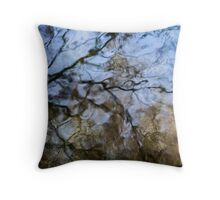 Imagined places Throw Pillow