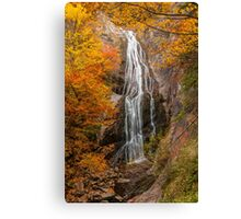 Autumn waterfall in the forest 2 Canvas Print