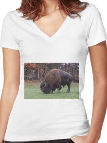American Field Buffalo grazing Women's Fitted V-Neck T-Shirt