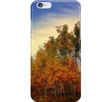 Fall's End 2014  iPhone Case/Skin