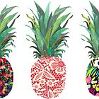 Row of Pineapples by hayleycross