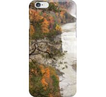 The Color of Falls iPhone Case/Skin