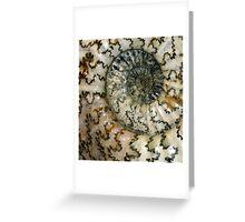 Spiral of the Ancients Greeting Card