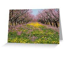 Blossom Heaven Greeting Card