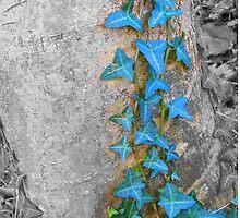 Blue Ivy by sammiejayjay