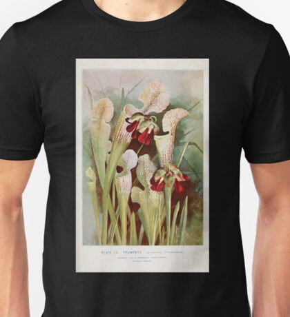Southern wild flowers and trees together with shrubs vines Alice Lounsberry 1901 061 Trumpets Pitcher Plant Unisex T-Shirt