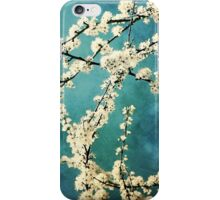 Waiting for Spring to Bloom iPhone Case/Skin