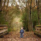 Autumn Wonder by Tracy Friesen