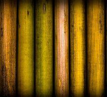 Stalks by Robert Meyer
