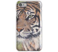Watching tiger iPhone Case/Skin