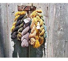 Wool Day At The Faire Photographic Print