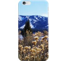 WINTERY PLANTS AND SNOW AT BIG BEAR LAKE iPhone Case/Skin
