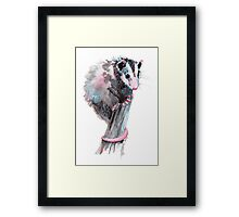 Virginia Opossum Baby Framed Print