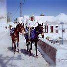 Days gone by in Greece by Charmiene Maxwell-Batten