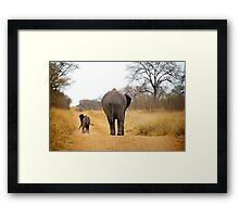 African Elephant (Loxodonta africana) mother and baby Framed Print