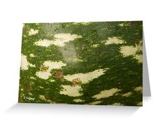 Gourd Abstract Greeting Card