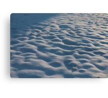 Snowy Lumps Canvas Print