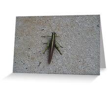 Jimmy Cricket Greeting Card