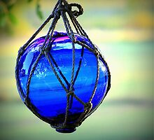 Blue Globe by CovePicsTas