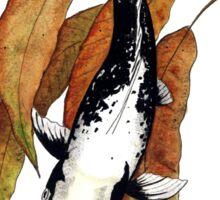 Japanese Koi Kawarimono Autumn Water  Sticker