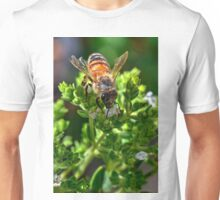 bee in the Oregano flowers Unisex T-Shirt