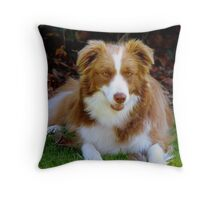 Sit Next To Me - Border Collie Throw Pillow