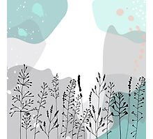Meadow wild flowers, grasses and plants. Photographic Print