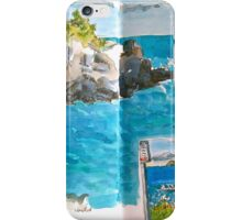 Rocks and Ocean iPhone Case/Skin