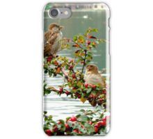 Lake Bled Birds iPhone Case/Skin