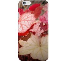 Georgia Peach Coral Bells iPhone Case/Skin