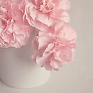Frilly Pink Carnations. by Lyn  Randle