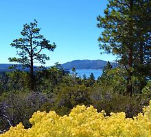 BIG BEAR LAKE WITH BRIGHT YELLOW FALL FLOWERS by CHERIE COKELEY