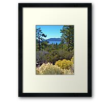 FALL COLORS SPECTACULAR IN BIG BEAR LAKE Framed Print