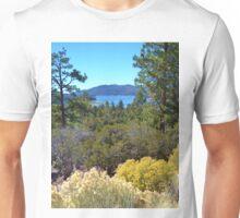 FALL COLORS SPECTACULAR IN BIG BEAR LAKE Unisex T-Shirt