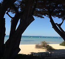 Sorrento beach by jayview