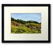 San Francisco Colorful Spring - Hilltop House With a View Framed Print