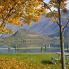 Okanagan Fall 3 by Priscilla Turner